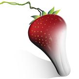erdbeerwoche
